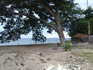 Picture of Residential Lot for sale in Bacong