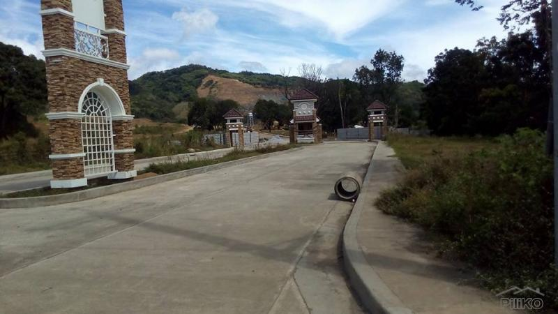 Picture of Residential Lot for sale in Antipolo