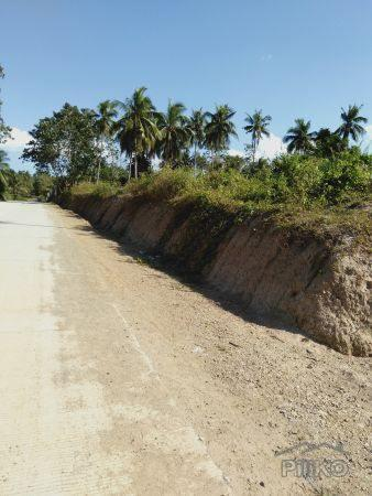 Picture of Residential Lot for sale in San Isidro