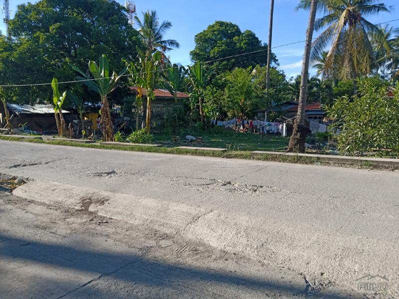Picture of Agricultural Lot for sale in Carmen