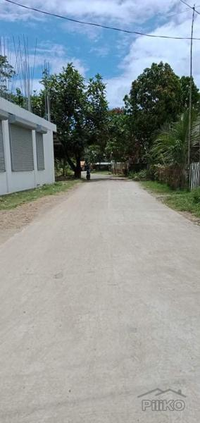 Picture of Residential Lot for sale in Talibon