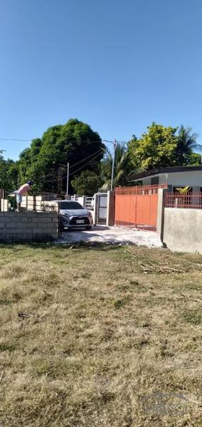 Picture of Residential Lot for sale in Danao