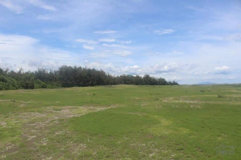 Picture of Other lots for sale in Olongapo
