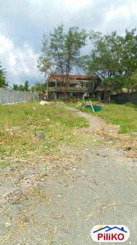 Picture of Agricultural Lot for sale in Iba