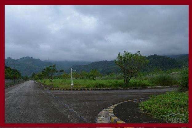 Picture of Residential Lot for sale in Baras