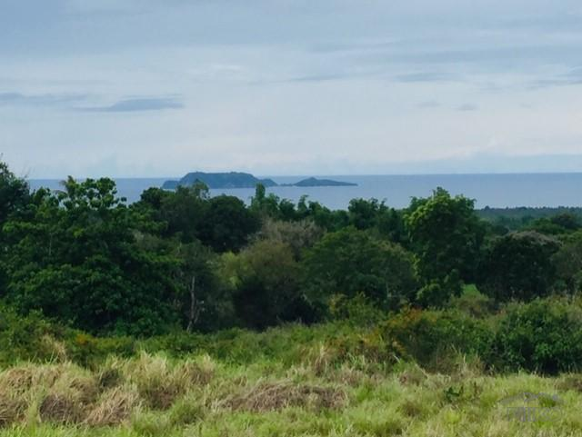Picture of Land and Farm for sale in Zamboanguita