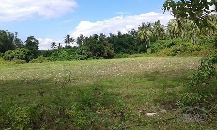 Picture of Other lots for sale in Dumaguete