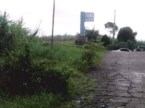 Picture of Land and Farm for sale in Nasugbu