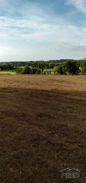 Picture of Land and Farm for sale in Calatagan