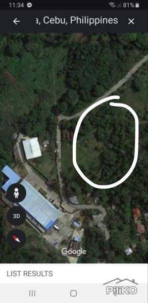 Picture of Agricultural Lot for sale in Naga