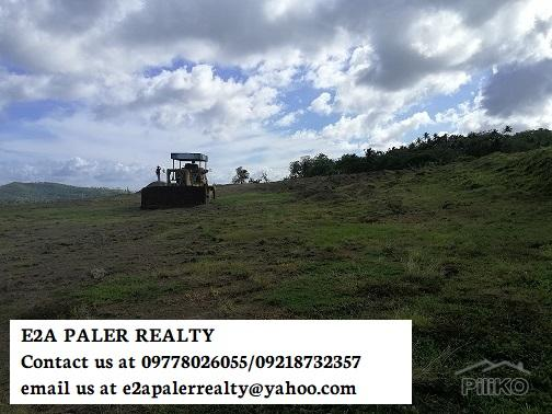 Picture of Land and Farm for sale in Daraga