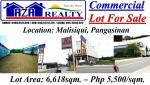 Other commercial for sale in Malasiqui