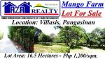 Land and Farm for sale in Villasis