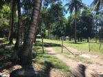 Residential Lot for sale in Bacong