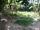 Residential Lot for sale in Minglanilla