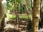 Residential Lot for sale in Tagbilaran City