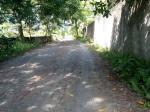 Agricultural Lot for sale in Talibon