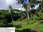 Land and Farm for sale in Oas