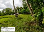 Agricultural Lot for sale in Daraga