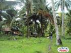 Agricultural Lot for sale in Kiamba