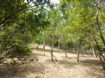 3 bedroom Land and Farm for sale in San Juan