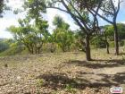 Residential Lot for sale in Talisay
