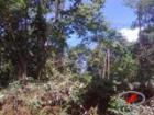 Agricultural Lot for sale in Candelaria