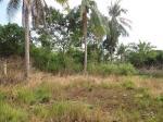 Condominium for sale in Panglao