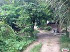 Residential Lot for sale in Consolacion