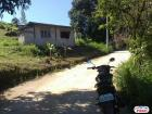 Agricultural Lot for sale in Consolacion